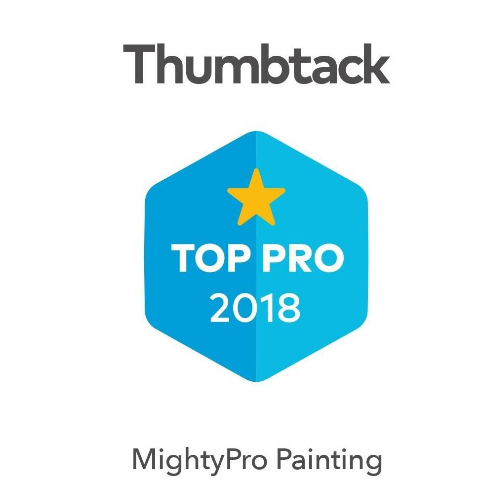 Mighty Pro Painting