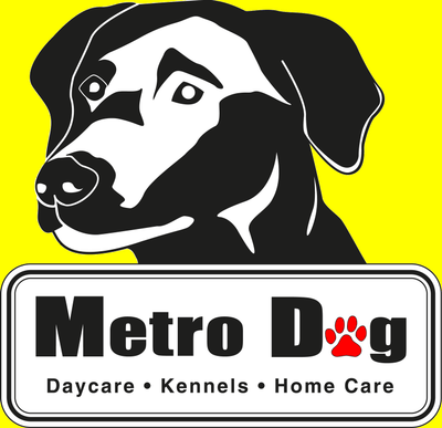 Avatar for Metro Dog