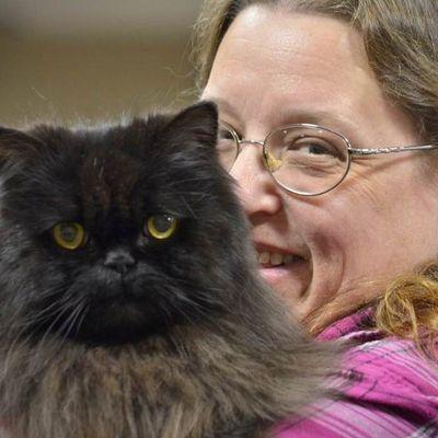 Avatar for Feline Friends Cat Care