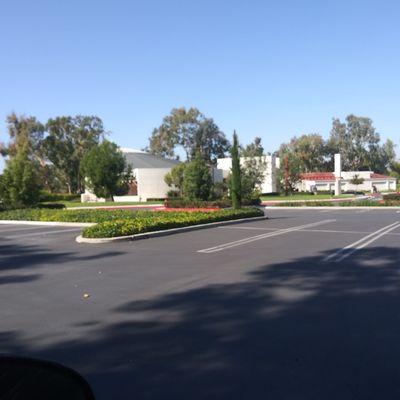 Avatar for Garciasgardening Santa Ana, CA Thumbtack