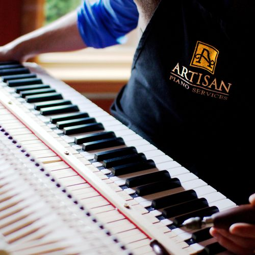 Folks often have questions about the fascinating inner workings of their piano.  Tunings come with a free evaluation of your piano's condition.
