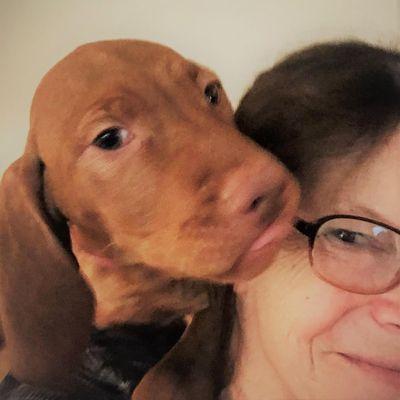 Avatar for Affordable Pet Sitting - Kathy Thorpe Pawtucket, RI Thumbtack