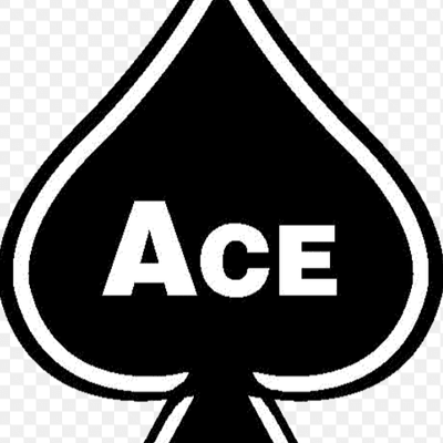 Avatar for Ace electric