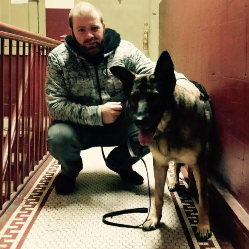 Mean Gene and his K9 companion on another bed bug chase.