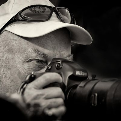 Avatar for Dave Kaup Photography Kansas City, KS Thumbtack