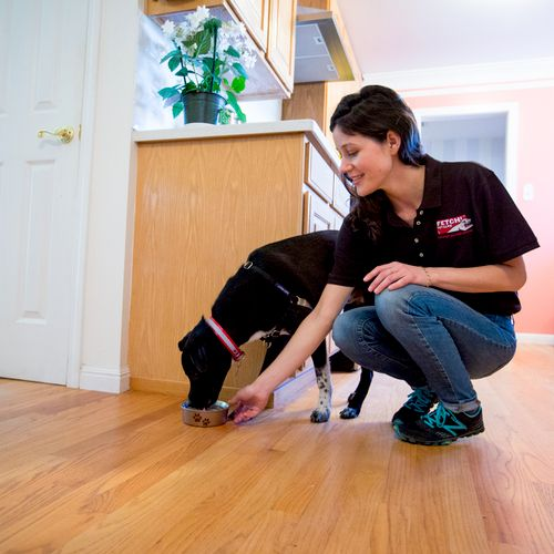 We'll feed your pets and care for your home when you're away.