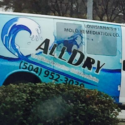 Avatar for All Dry Water Damage Experts