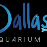 Avatar for Dallas Aquarium Kings Dallas, TX Thumbtack