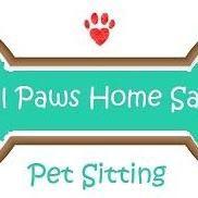 All Paws Home Safe