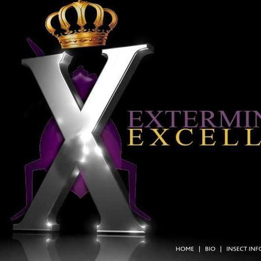 EExcellence (YS) CORP