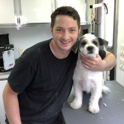 The 10 Best Mobile Dog Groomers In Vancouver Wa 2020