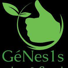 GéNes1s Landscaping  Services LLC