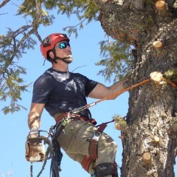 Vasbyt Tree Tech
