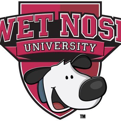 Avatar for Wet Nose University - Dog Training Tampa