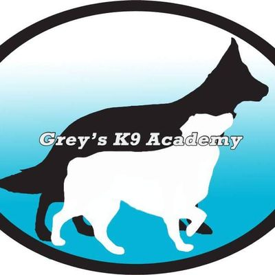 Avatar for Grey's K9 Academy Grants Pass, OR Thumbtack