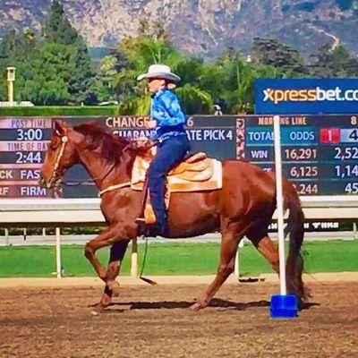 Avatar for Premier Equine Rehab Orange, CA Thumbtack