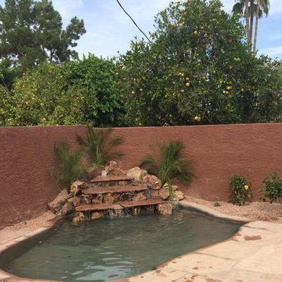 Avatar for Arizona Specialty Landscapes Mesa, AZ Thumbtack