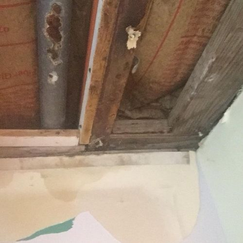 Rotted Kitchen Drain in Ceiling