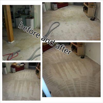 Avatar for carpet boss restoration Gwynn Oak, MD Thumbtack