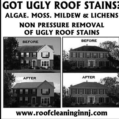 Avatar for Pro Property Maintenance