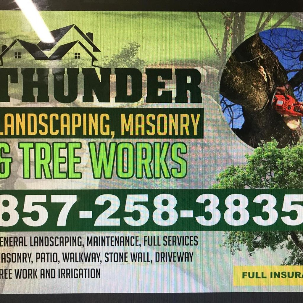 Thunder Landscaping and contruction Mansory tre...