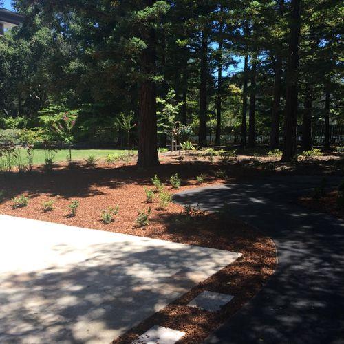 Atherton Landscaping
