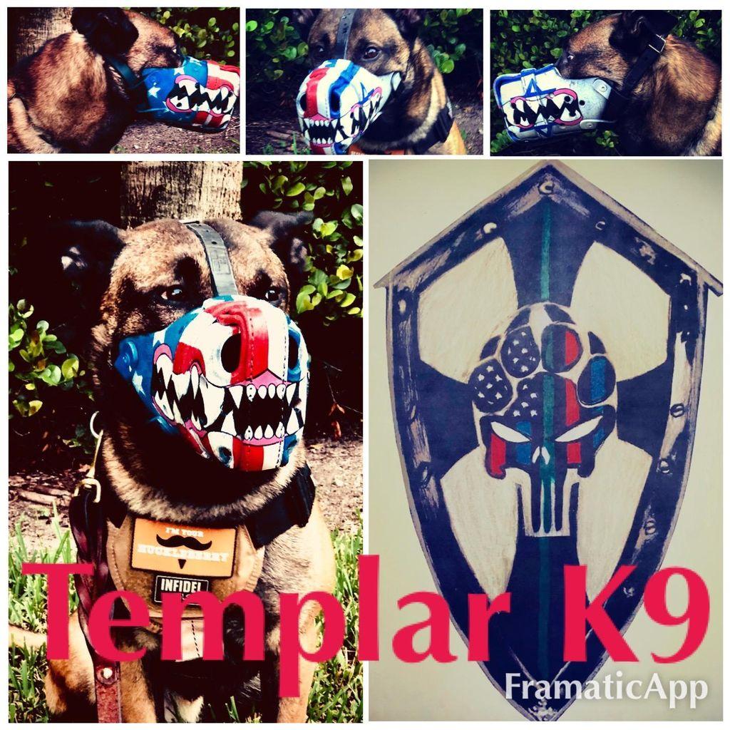 Templar K9
