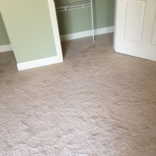 See the carpet looks wet in the normal picture.