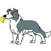 Avatar for Dandy Dogs Brigham City, UT Thumbtack