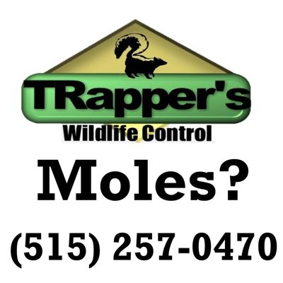Avatar for TRappers Wildlife Control