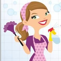 Selena's Spotless Cleaning Service