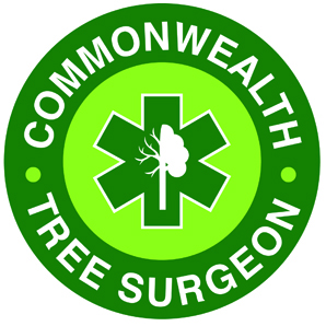 Avatar for Commonwealth Tree Surgeon Raymond, NH Thumbtack