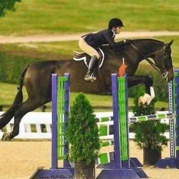 Somerset Sporthorse Inc.
