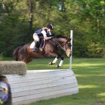 Premiere Equestrian