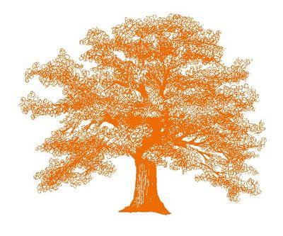 Avatar for Orange Tree Landscape Services