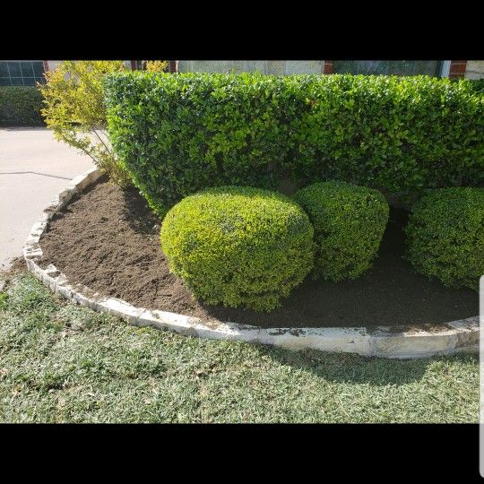 Vasquez Lawn Service LLC