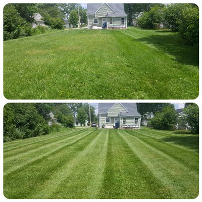 Avatar for Mad Dog Lawn Care n property maintenance Fort Wayne, IN Thumbtack