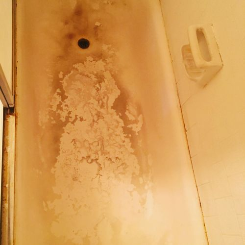 """1 year of lime, rust, soap scum build up.  I was not able to remove with lime away, Ajax, or scrubbing tools.   With determination I found a remedy to this task that was rendered hopeless to the owner.  We """"Exceeded Expectations"""" for our valued customer!"""