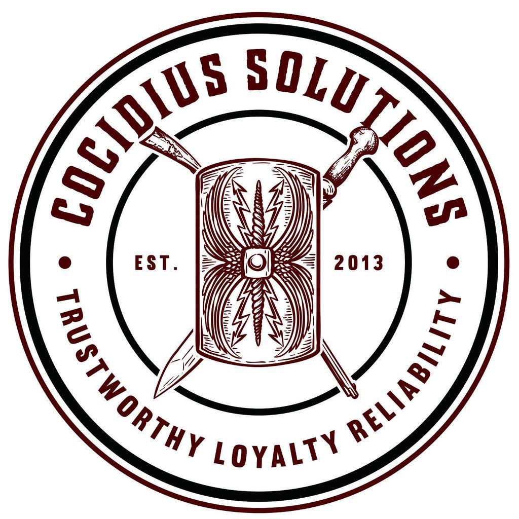 Cocidius Solutions