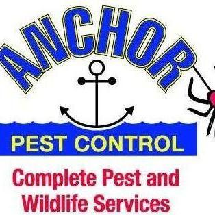 Avatar for Anchor Pest Control Denver, CO Thumbtack