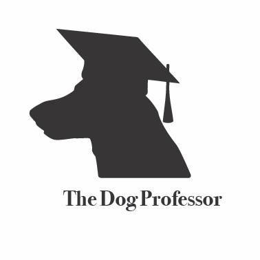 The Dog Professor LLC