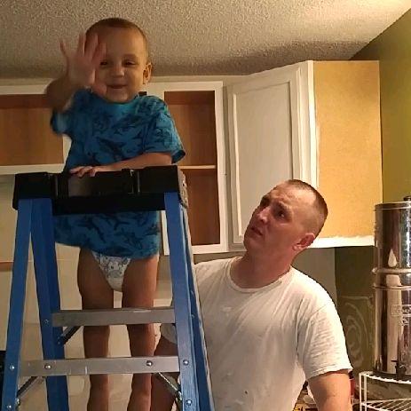 Dolon handyman services