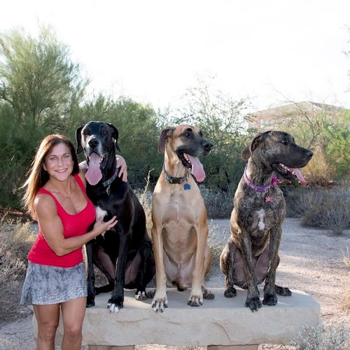 Elisa and her Danes doing the place target command.