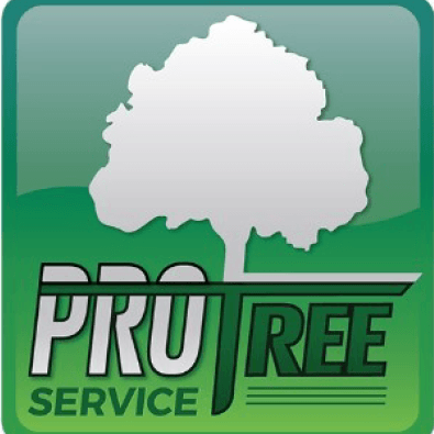 Avatar for Pro Tree Service Mokena, IL Thumbtack