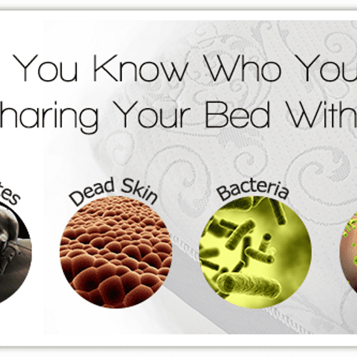 What's living in your mattress