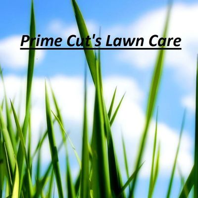 Avatar for Prime Cut's Lawn Care Springfield, IL Thumbtack