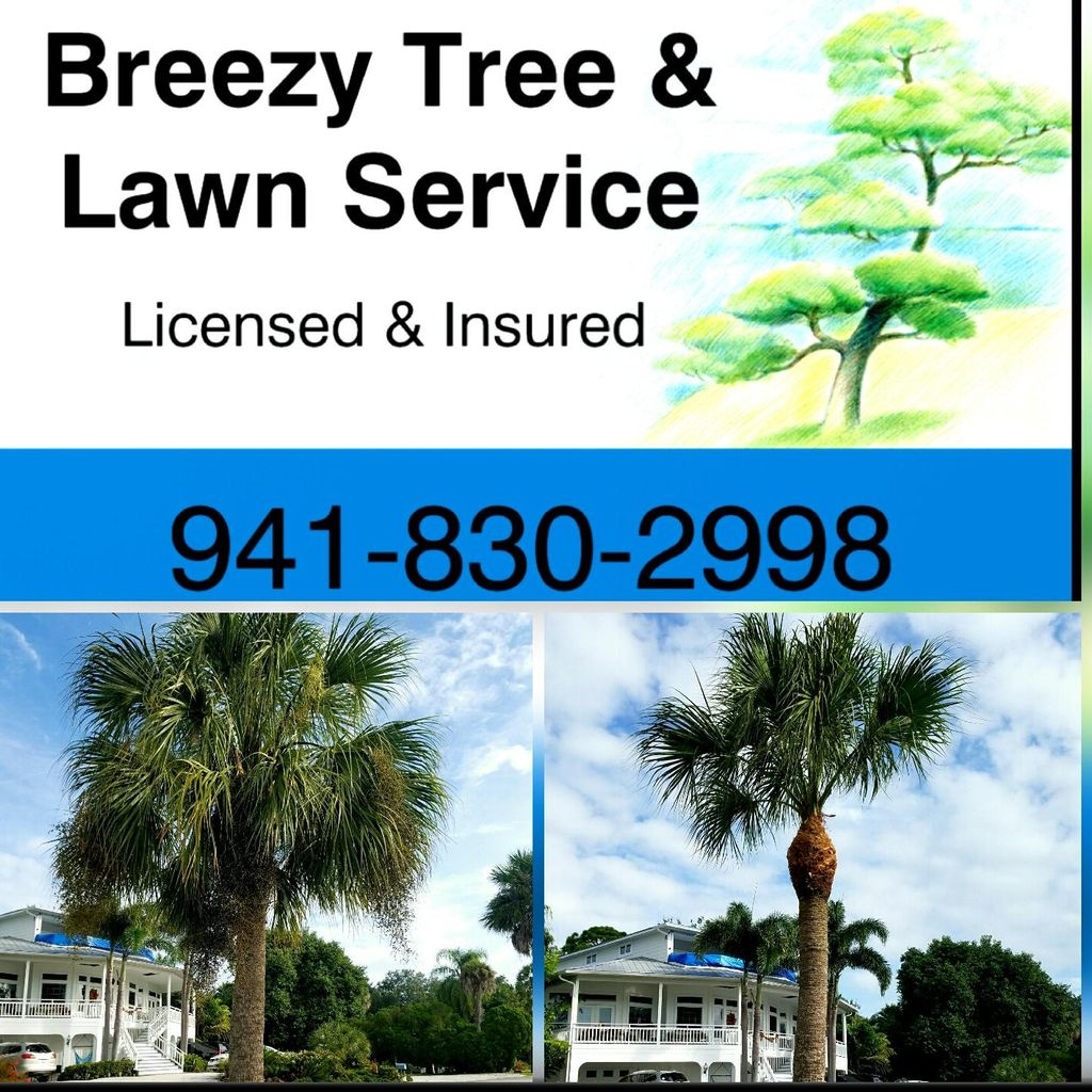 Breezy Tree and Lawn Service
