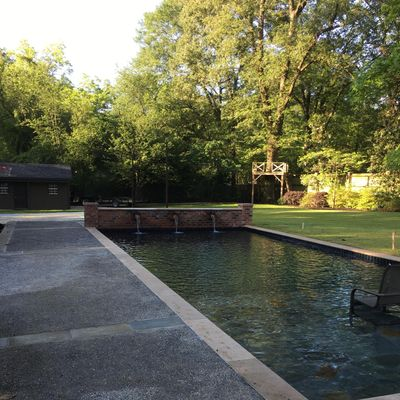 The 10 Best Swimming Pool Repair Services in Memphis, TN 2020