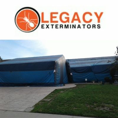 Avatar for Legacy Exterminators, Inc. Oxnard, CA Thumbtack