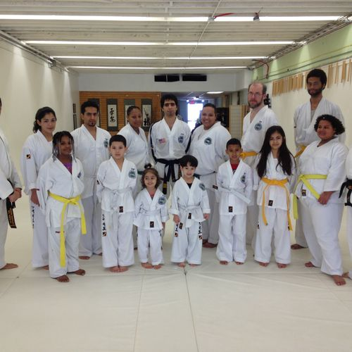 Family Martial Arts - Olympic Taekwondo - Adults + Families